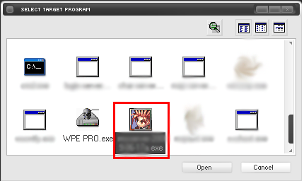 Selecting game.exe in WPE Pro.